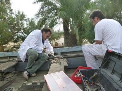 CRBMC . Finalitzen els treballs de restauració del bot Víctor Rojas de Vilanova