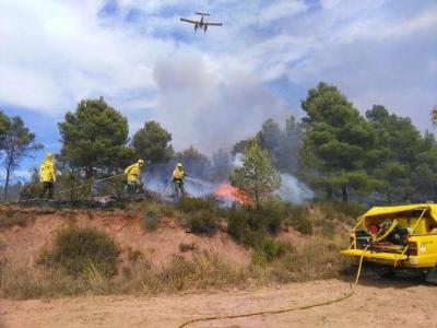 Una setantena de voluntaris del Penedès i Garraf, a l'incendi d'Òdena. ADF Penedès Garraf