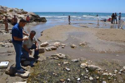 El Col·legi de Geologia de Catalunya visita el broll d'aigua dolça de Sitges. Ajuntament de Sitges