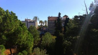 El ple de Vilanova es reprèn dissabte amb el bosquet de Baix a Mar com a tema més destacat. Veïns de Vilanova