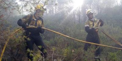 Els bombers apaguen gairebé 4.600 incendis de vegetació aquest 2016, un 8% més que l'any passat
