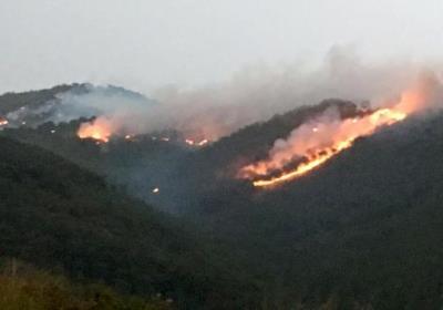 Incendi forestal a Olivella. Eix