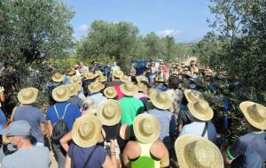 Prop de 300 persones participen a la Verema Solidària per