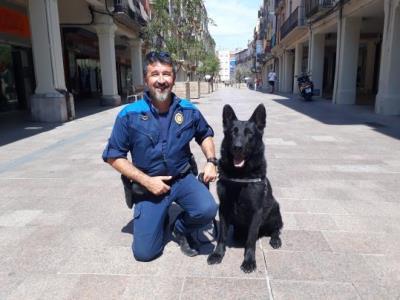 La Policia Local de Vilafranca estrena una unitat canina