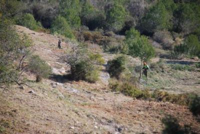 Neteja de boscos als Colls i Miralpeix per prevenir els incendis i conservar l'entorn. Míriam de Lamo