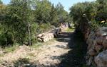 Pla obert d'un tram del camí ramader recuperat a Vilanova i la Geltrú en el marc de la recuperació de la zona verda de l'Ortoll