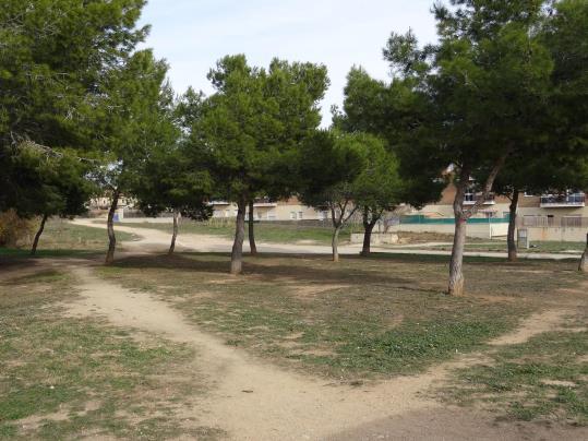 Santa Margarida i Els Monjos habilitarà tres espais públics per tal que els gossos puguin jugar i córrer. Ramon Filella