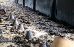Un incendi calcina 4.500 pollastres d'una granja de Castellví de la Marca