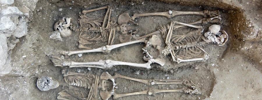 Descobreixen una necròpolis del segle XIII a les obres d'ampliació del Vinseum de Vilafranca del Penedès
