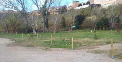Actes vandàlics al projecte escolar de Sant Sadurní L'Hort i el Bosc de les escoles. Ajt Sant Sadurní d'Anoia