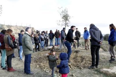 Amics i familiars reten homenatge a Pau Pérez, víctima de l'atemptat a les Rambles, amb una plantada d'oliveres. ACN