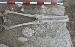 Descobreixen una necròpolis del segle XIII a les obres de Cal Pa i Figues de Vilafranca del Penedès