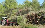 En marxa els treballs forestals a Ribes que generen biomassa per proveir calderes