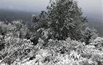 La neu torna a enfarinar alguns punts de Canyelles