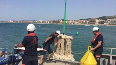 Submergit un biòtop a la costa de Calafell per ajudar a regenerar la fauna marítima. Ajuntament de Calafell