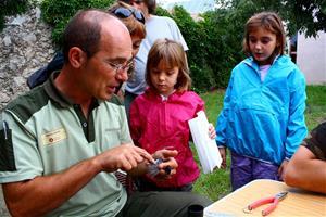 30 anys de seguiment de migració d'ocells al Parc del Garraf