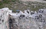 Brutícia al Parc de la Rambla de Sant Sadurní d'Anoia