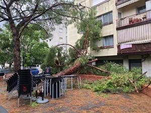 Destrosses al carrer, inundacions i despreniments per la tempesta que ha escombrat el Garraf i Baix Penedès aquesta nit