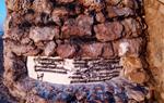 Fan destrosses i pintades a la platja de la República de Vilanova