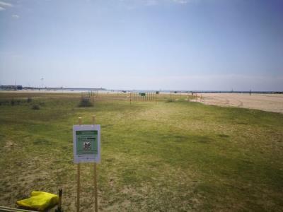 Noves postes del corriol camanegre fora de l'espai protegit de Ribes Roges. Ajuntament de Vilanova