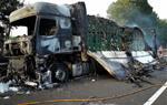 Un camió amb remolc s'incendia a l'AP-7 a Castellet i la Gornal