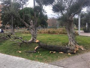 Alerta pel temporal a Calafell