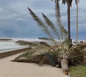 Alerta pel temporal marítim a Cunit
