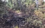Dos petits incendis a Torrelavit cremen una zona de matoll de Can Rossell i un canyar a la zona del Molí Parellada