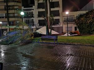 Els efectes del temporal de vent i pluja a Vilanova i la Geltrú