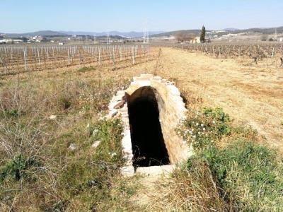 Inicien una recerca sobre els refugis antiaeris de la Guerra Civil al Penedès. IEP