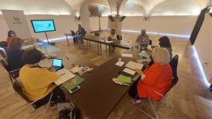 El Consell d'Alcaldies debat sobre el Pla Estratègic d'Activitat Econòmica del Garraf