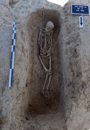 Els treballs per plantar una vinya posen al descobert restes ibèriques i una necròpolis romana a Avinyonet del Penedès