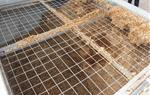 La caldera de biomassa de Sant Martí Sarroca és un exemple d'energia sostenible