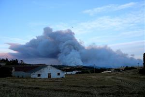 Nit d'alerta al nord del Penedès per l'incendi sense control de Santa Coloma de Queralt