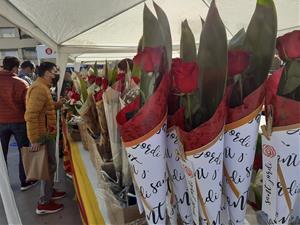 Vilanova i la Geltrú s'omple de llibres i roses per la diada més esperada de Sant Jordi